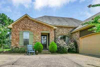 Brandon Single Family Home For Sale: 410 Mason Ct