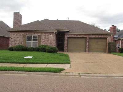 Brandon Single Family Home For Sale: 338 Greengate Cir