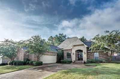 Brandon Single Family Home For Sale: 552 Turtle Ln