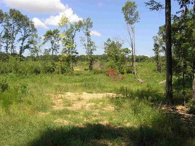 Residential Lots & Land For Sale: Magnolia Rd