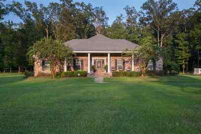 Brandon Single Family Home For Sale: 125 Virginia Valley Dr