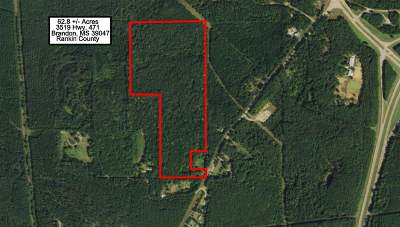 Brandon Residential Lots & Land For Sale: 3519 Highway 471 Hwy