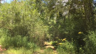Scott County Residential Lots & Land For Sale: 01 Windham Rd