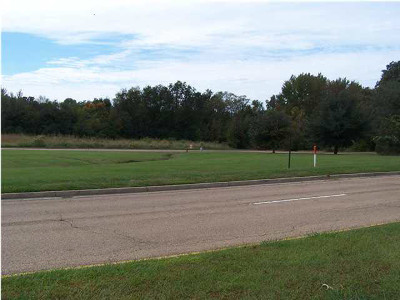 Madison Residential Lots & Land For Sale: 463 Highland Colony Parkway