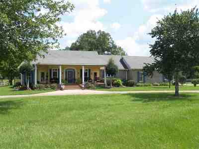 Hinds County Single Family Home For Sale: 860 I-55 South Frontage Rd