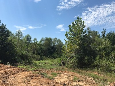 Residential Lots & Land For Sale: Prospect St