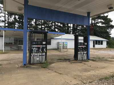 Commercial For Sale: 1812 W Highway 16 West Hwy