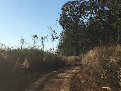 Scott County Residential Lots & Land For Sale: Turner St