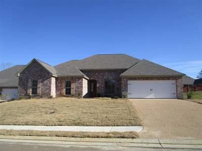 Brandon Single Family Home For Sale: 404 West Cowan Creek Cv