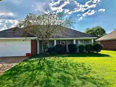 Rankin County Single Family Home For Sale: 166 Holmar Dr