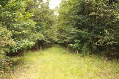 Residential Lots & Land For Sale: Hwy 472 None