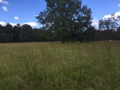 Hinds County Residential Lots & Land For Sale: Sleepy Hollow Rd