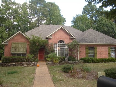 Pearl Single Family Home For Sale: 434 Apple Valley