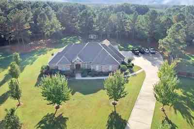 Brandon Single Family Home For Sale: 317 Kitty Hawk Cir