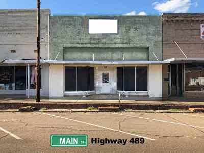 Commercial For Sale: 209 Main St