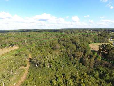 Residential Lots & Land For Sale: Sistrunk Rd