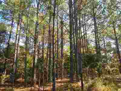 Residential Lots & Land For Sale: County Rd 427