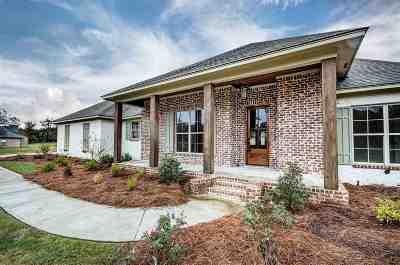 Brandon Single Family Home For Sale: 604 Kylemore Ln