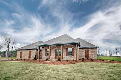 Brandon Single Family Home For Sale: 608 Kylemore Ln