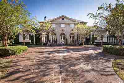 Ridgeland Single Family Home For Sale: 165 Butler Rd