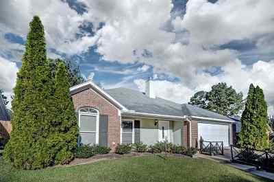 Brandon Single Family Home For Sale: 3032 E Fairway Dr