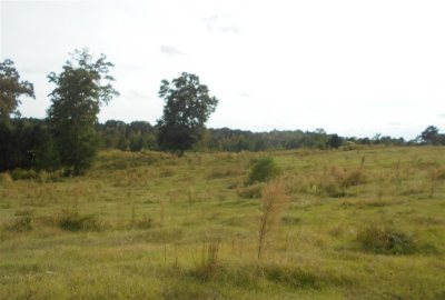 Residential Lots & Land For Sale: Norman Rd