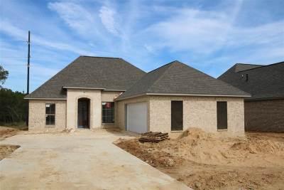 Brandon Single Family Home For Sale: 808 Emma's Way