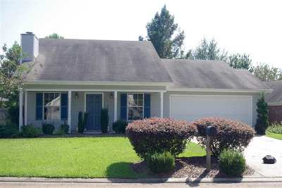 Brandon Single Family Home For Sale: 365 Swan Dr