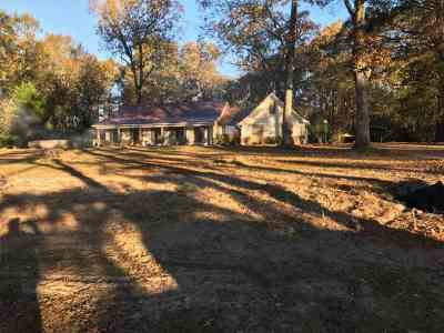 Brandon Single Family Home For Sale: 2709 Hwy 80