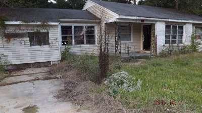 Jackson Single Family Home For Sale: 736 Dorgan St