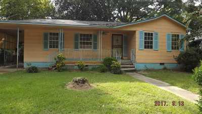 Jackson Single Family Home For Sale: 511 Willaman St