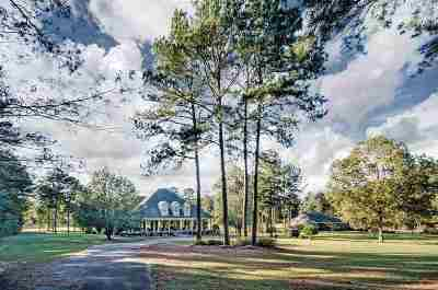 Rankin County Single Family Home For Sale: 207 Lake Terrace Pl