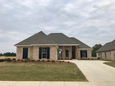Canton Single Family Home For Sale: 208 Buttonwood Lane