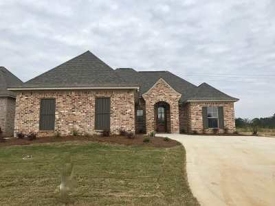 Canton Single Family Home For Sale: 202 Buttonwood Lane