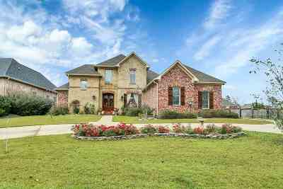 Brandon Single Family Home For Sale: 117 Pinnacle Cir