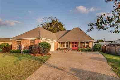Brandon Single Family Home For Sale: 1421 Windrose Dr