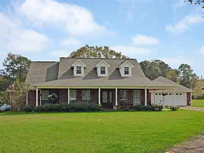 Smith County Single Family Home For Sale: 542 Scr 581