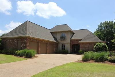 Ridgeland Single Family Home Contingent/Pending: 117 Carlton Blvd