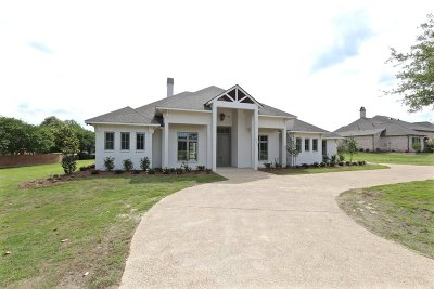 Ridgeland Single Family Home For Sale: 237 Richardson Rd