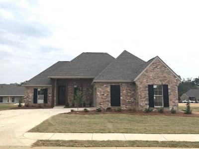 Canton Single Family Home For Sale: 221 Buttonwood Lane