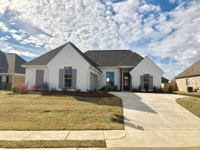 Canton Single Family Home For Sale: 218 Buttonwood Lane