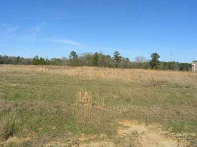 Hinds County, Madison County, Rankin County Residential Lots & Land For Sale: Clinton Industrial Park Dr