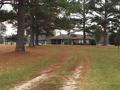 Leake County Single Family Home For Sale: 4552 Utah Rd Utah Rd