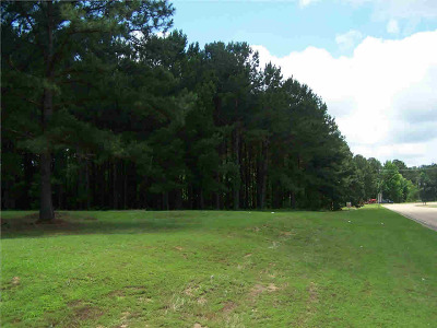 Ridgeland Residential Lots & Land For Sale: 1 Highland Colony Parkway