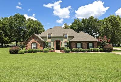 Madison Single Family Home For Sale: 962 Gluckstadt Rd