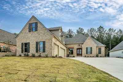 Brandon Single Family Home For Sale: 111 Bella Vista Dr