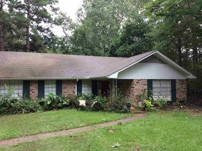Clinton Single Family Home For Sale: 610 E Leake St