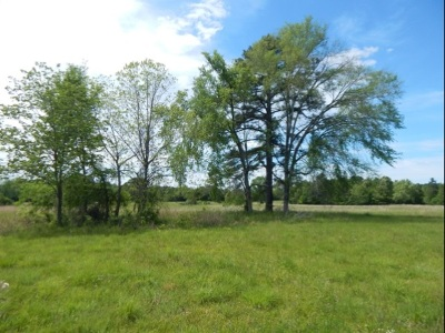 Residential Lots & Land For Sale: Truitt Rd
