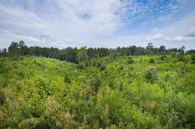Residential Lots & Land For Sale: 1 Ben Chapman Rd