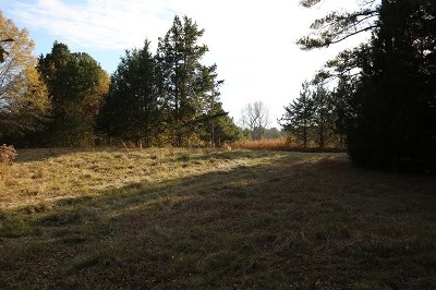 Leake County Residential Lots & Land For Sale: 2753 Crawford Cir